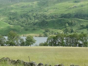 Sattes Grün und noch immer am Loch Lomond.